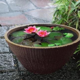 備前焼の睡蓮鉢(大)